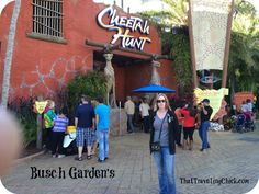 Cheetah Hunt at Busc