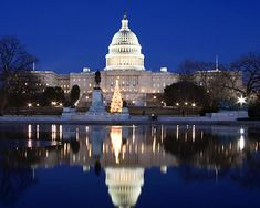 Nation's Capitol!