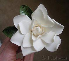 Petalsweet's Gardenia
