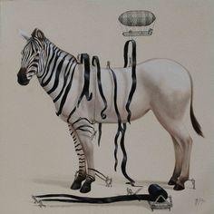 ricardo soli, zebra, stripe