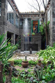 The Intercontinental Gardener:Frida Kahlo's La Casa Azul in Coyoacan