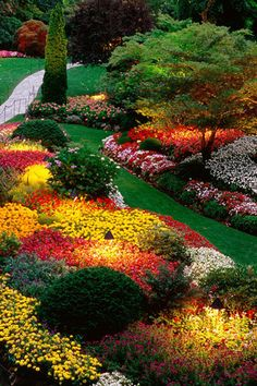 Places: Garden, and with the brilliant colors I'm looking for.