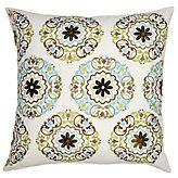 Pillow from ZGallerie