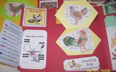 Free Chicken Lapbook