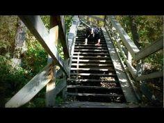 Underdog Concepts - Exercise - Backward Bear Walk (Stairs)