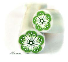 Murrina flor verde   Flickr - Photo Sharing!