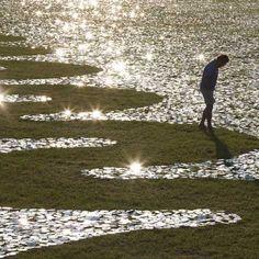 Field of Light  by Bruce Munro