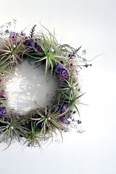 Living Wreath by robincharlotte: Made of live air plants, live spanish moss, hand-dried seasonal purple flowers, and other subtle sparkling foliage details. #Wreath #Air_Plant