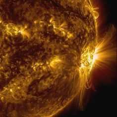 The biggest sunspot in 25 years put on a glorious show of coronal loops as it rotated out of view. It may survive until it rotates back into view next week.  This view from NASA's space-based Solar Dynamics Observatory combines two wavelengths of extreme ultraviolet light.