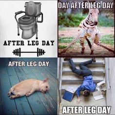 LEG DAY!!  fitness motivation inspiration crossfit health nutrition workout weights weightlifting exercise lifestyle protein goals WOD running zumba clean eating eat clean