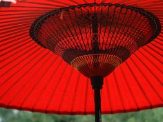 estrutura de guarda chuva japonês