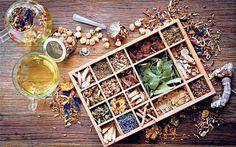 Herbs: make the most of nature's medicine cabinet via the Telegraph & Jekka McVicar.