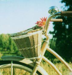 Bike basket.