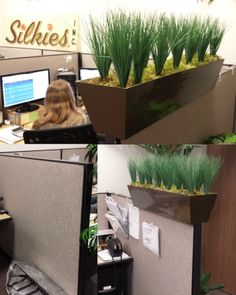 Office space on pinterest 24 pins - Cubicle planters ...