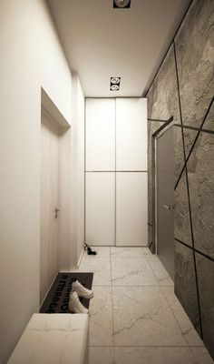Minimalist Modern Interior Design for Small Apartment: Modern Narrow Entryway Design In The Interior For A Young Couple With Exposed Concret...