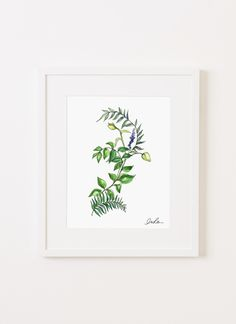 Botanical No. 4 (print)