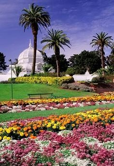 Golden Gate Park, San Francisco. Repinned onto All Colorful Places to Go san francisco california, parks, conservatory of flowers, places to visit in california, golden gate, gates, flowers garden, botanical gardens, gate park