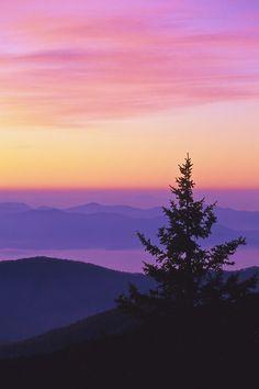 Dawn at clingmans dome. Great Smoky Mountains, North Carolina.