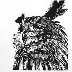 Owl lino cut by lizchaderton, via Flickr