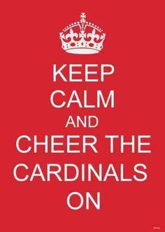 Louisville Cardinal <3