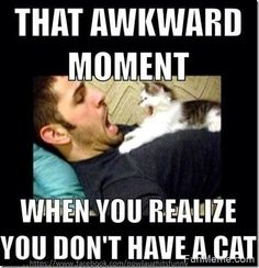 That awkward moment when your realize you don't have a cat.