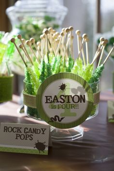 Rock candy at a Creepy Crawly Birthday Party!  See more party ideas at CatchMyParty.com!    #boybirthday