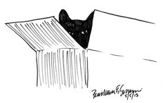 Daily Sketch: Box With Cat