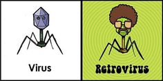 Memes Of Microbiology /Funny Pictures of Micro-Biology/Bacteria/Viruses