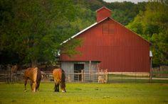 Homestead Heritage Barn, Heritage Restorations,