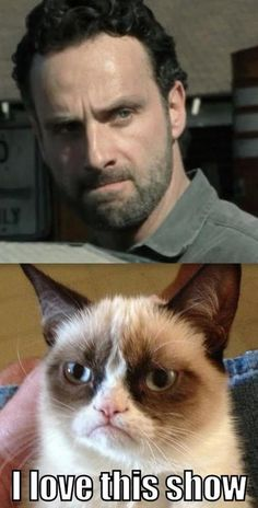 Grumpy Cat loves The Walking Dead