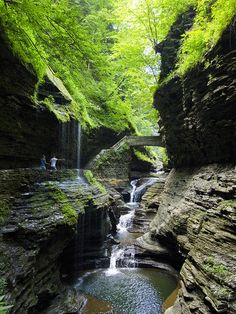 by Rob Perry Design on Flickr.  Gorge Trail in Watkins Glen State Park - New York State, USA.