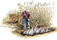 By making biochar from brush and other hard to compost organic material, you can improve soil — it enhances nutrient availability and also enables soil to retain nutrients longer.
