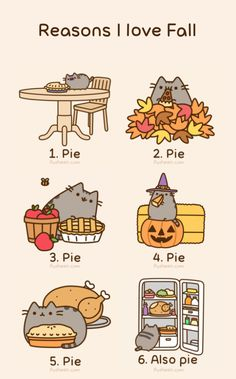 6 very good reasons to love Fall!! :-)