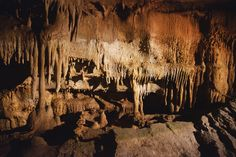 Mammoth Caves, KY