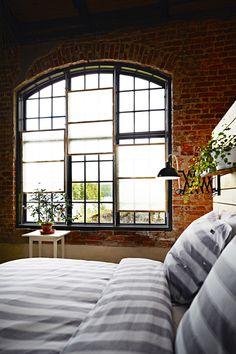 / gorgeous windows a