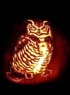 Google Image Result for http://www.masterpiecepumpkins.com/Graphics/bird-GreatHornedOwl%2520(5)_____.jpg