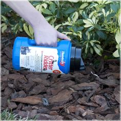 Havahart® Critter Ridder® Animal Repellent, 1.25 lb. Granular Shaker - Covers up to 75 sq. ft. Compliant for use in organic gardening. Safe to use around children & pets. Repells: skunks, groundhogs, dogs, cats, raccoons, chipmunks and squirrels! #animals #wildlife #backyard