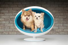 The new Padpod pet bed by Bark & Miao takes luxury pet furniture to a whole new level with its sleek, 1960s-inspired modernist looks