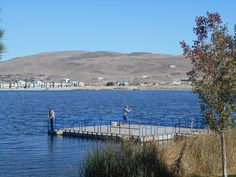 Sparks marina on pinterest victorian volleyball and fishing for Sparks marina fishing