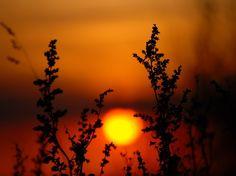 Peaceful Sunset. Sunset Sunset Sunset