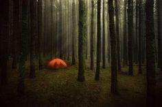 I would camp here so hard.. - Imgur