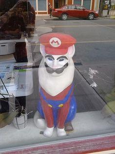 Mario Cat 8