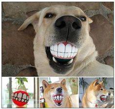 Awesome dog toy