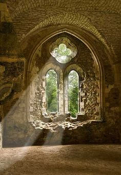 Netley Abbey Ruins, Southampton, England  photo via evelina