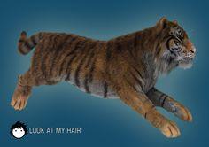 Tiger! big cats, tigers, wet fur, tiger wet, imag, coats, render