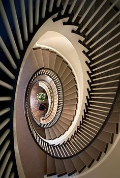 Amazing staircase!!