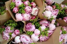 this makes me happy. rose, bouquet, photograph, green, paper, beauty, garden, flower, pink peonies