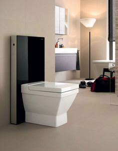 Square toilet with black back