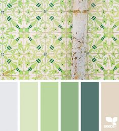 Color Tiled