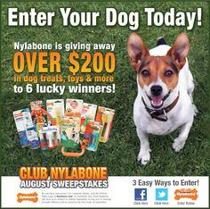 Nylabone August Sweepstakes